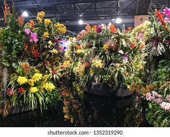 Philadelphia, Pennsylvania, USA - March 9, 2019: Philadelphia Horticultural Society Annual Flower show, floral set arrangement at the exhibit