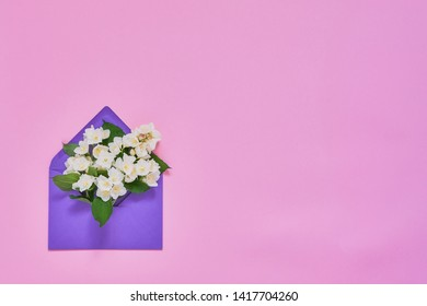 Philadelphus or mock-orange flowers in violet envelope on pink pastel background. Flat lay of Birhday, Mothers Day, bachelorette, Wedding concept. Copy space, top view.