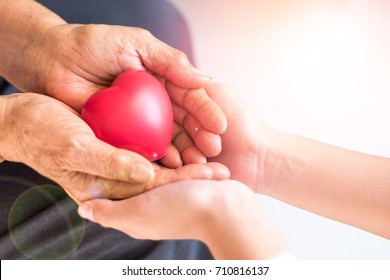 Philanthropy health care concept. Caregiver  with senior people hands with heart in palm in hospice center with copyspace. Public Service Recognition Week