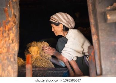 PHILIPPINES, BANAUE - JANUARY 9, 2017: Eldery woman sorts rice in mountain traditional village Batad.