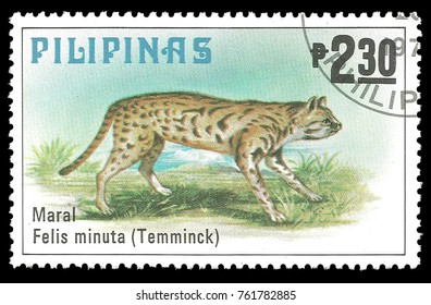 Philippines - stamp printed in1979, Series Fauna, Animals, Leopard Cat