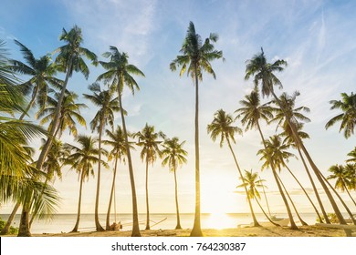 Philippines. Sunset and coconut palms on the shore.
