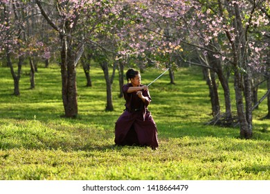 """Phitsanulok province Thailand, January 05 2019 : Young people dressed in traditional Japanese clothes To match the flower of """"sakura thailand"""" atmosphere blooming"""