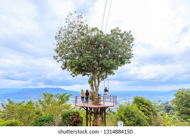 Phitsanulok, Thailand - December 30, 2018: Heart shape tree at a resort in Ban Rak Thai village, Noen Maprang District.