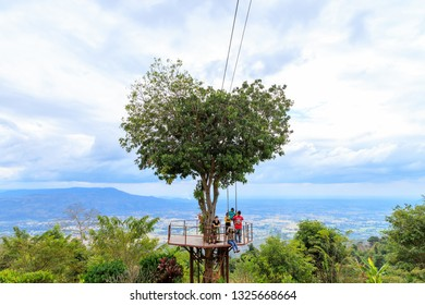 Phitsanulok, Thailand - December 30, 2018: Heart shape tree at a resort in Ban Rak Thai village, Noen Maprang District.