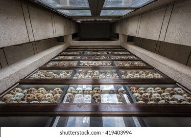 PHNOM PENH, CAMBODIA - MAY 07,2016 : Human skulls of victims of the Khmer Rouge at the Killing Fields of Choeung Ek memorial, Phnom Penh, Cambodia.