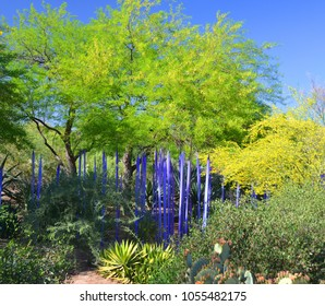 PHOENIX ARIZONA MAY 02 14: The Desert Botanical Garden in Phoenix hosted an exhibition of Dale Chihuly's works of art in glass