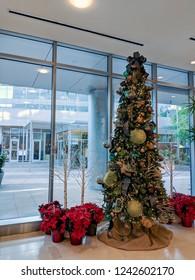 PHOENIX, AZ - NOVEMBER 27, 2018: Barrel cacti used as ornaments hanging on Christmas tree in Phoenix downtown