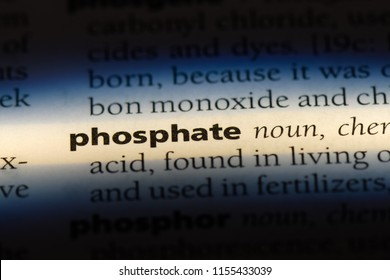 phosphate word in a dictionary. phosphate concept.