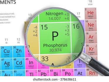 Phosphorus - Element of Mendeleev Periodic table magnified with magnifying glass