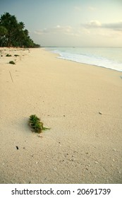 A photo of an african beach just after sunrise.