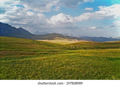 photo of Alay valley, Kyrgyzstan, stylized and filtered to look like oil painting. In foreground steppe, and small silhouettes of grazing cattle, in the background spectacular  mountains and clouds