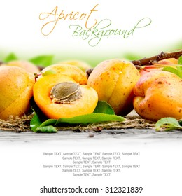 Photo of apricots with leaves and white space for text