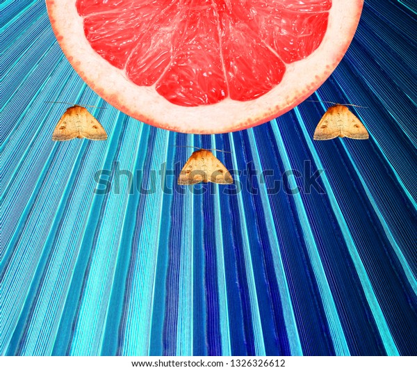 Photo background bright green tropical leaf with fruit