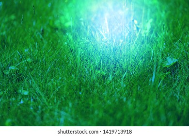 Photo background macro green fresh grass lawn with drops of dew in the morning