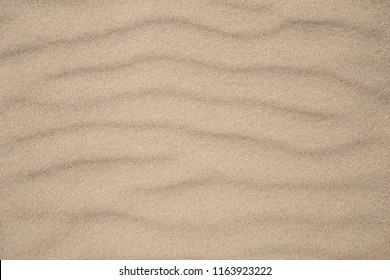 A photo of a beach sand texture. Here is room for text or background.