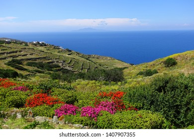 Photo from beautiful nature with stunning veiws to the Aegean blue sea of Folegandros island at spring, Cyclades, Greece