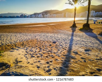 A photo of beautiful palm trees on a beautiful beach by the Mediterranean Sea at sunset. It was taken on San Antonio beach in Cullera, a very touristic seaside town in Valencia, Spain, Europe.