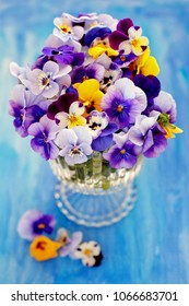 Photo of a beautiful  pansy flowers close-up on a blue background. Beautiful and delicate flowers.
