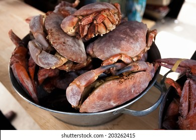 Photo of black crabs on kitchen at metal bucket