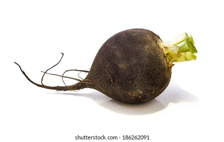 Photo black winter radish on a bright background .