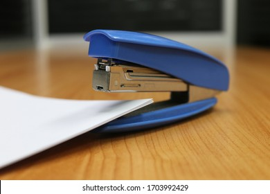 Photo of blue stapler put on the table in office, stapler is a device used in schools or offices