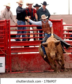 Photo of bullrider at the Help A Child Smile Rodeo Sept. 3/2006 in Welland, Ontario, Canada.