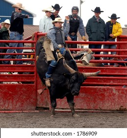 Photo of Bullrider at the Help A Child Smile Rodeo, Sept. 3/2006 in Welland, Ontario, Canada.