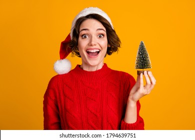 Photo of cheerful funny lady celebrate winter holidays hold little decor fir tree christmas atmosphere good overjoyed mood wear santa cap red knitted sweater isolated yellow color background - Shutterstock ID 1794639751