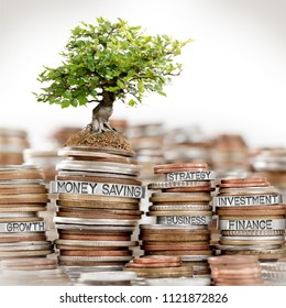 Photo of coin rows and tree with MONEY SAVING concept related words imprinted on metal surface isolated on white