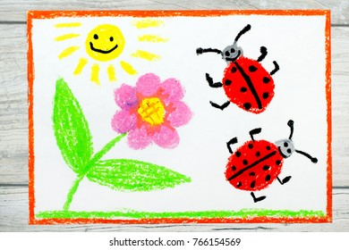 Photo of colorful drawing: flower, sun and ladybugs on white paper background