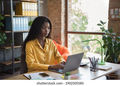 Photo of dark skin focused young woman job in finance write laptop sit desk workstation indoors workplace