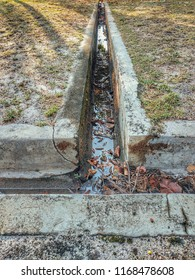 Photo of drain clogged with dead leaves and rubbish.