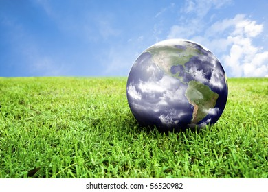 photo of earth in grass ideal for background