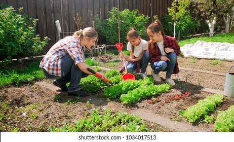 Photo of family with children working in garden