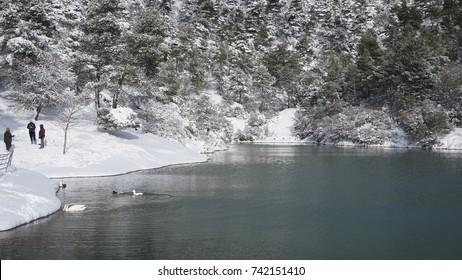 Photo of famous Lake Beletsi covered in snow, Ipokrateios politeia, Parnitha, Attica, Greece