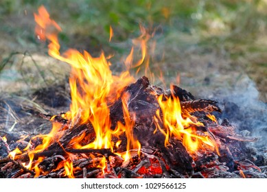 Photo of the fire. Burning fire with tongues of flame. Burning branches smolder in the fire. Big bonfire for a picnic on a summer day. The texture of a natural fire.