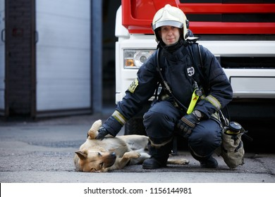 Photo of firefighter sitting squatting next to service dog at fire engine