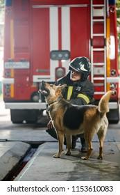 Photo of fireman squatting next to shepherd near fire engine