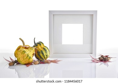 Photo frame on table with decorative colorful mini Pumpkins