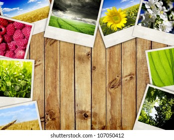 Photo frames over wooden planks background. Nature pictures