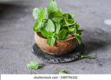 Photo of fresh mint leaves in a bowl. Peppermint plants in a bowl. Ingredients for summer cocktails and lemonade. Herb. Still life photography. Image