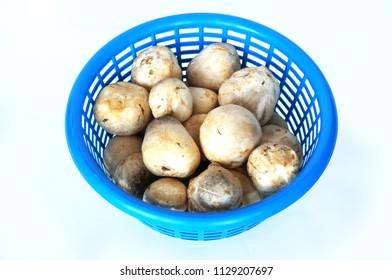 A photo of fresh straw mushroom ( Volvariella volvacea ) on blue basket isolated on white background, close up