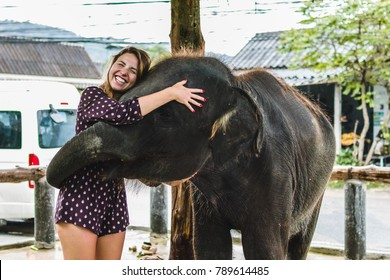 Photo of Girl Feeding Baby Elephant in Thailand