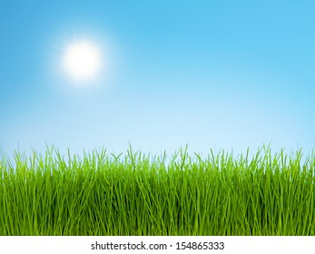 Photo of green grass against bright blue sky on a sunny day.