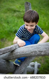 photo of happy  kid playing in the nature climbing tree