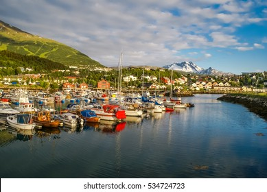 Photo of harbour with boats on water and houses surrounded by greenery in distance in Narvik in Norway.