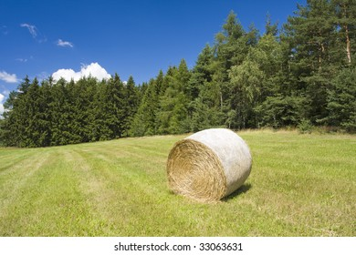 Photo of a haycocks on the field with blue sky