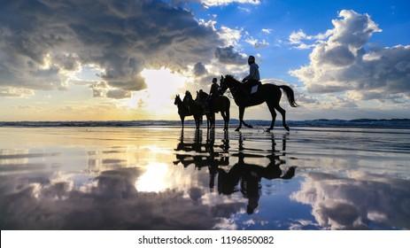 A photo of Horsemen riding horses in the Beach, Gaza - Palestine.