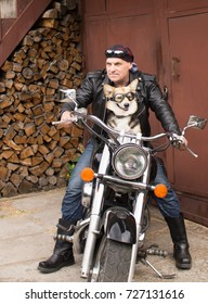 Photo of humor. The biker and his dog are sitting on a motorcycle.